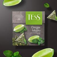Чай зеленый Tess Ginger Mojito в пирамидках 1 пачка